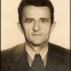 Milomir_Nestorović